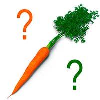 Морковка для члена президиума